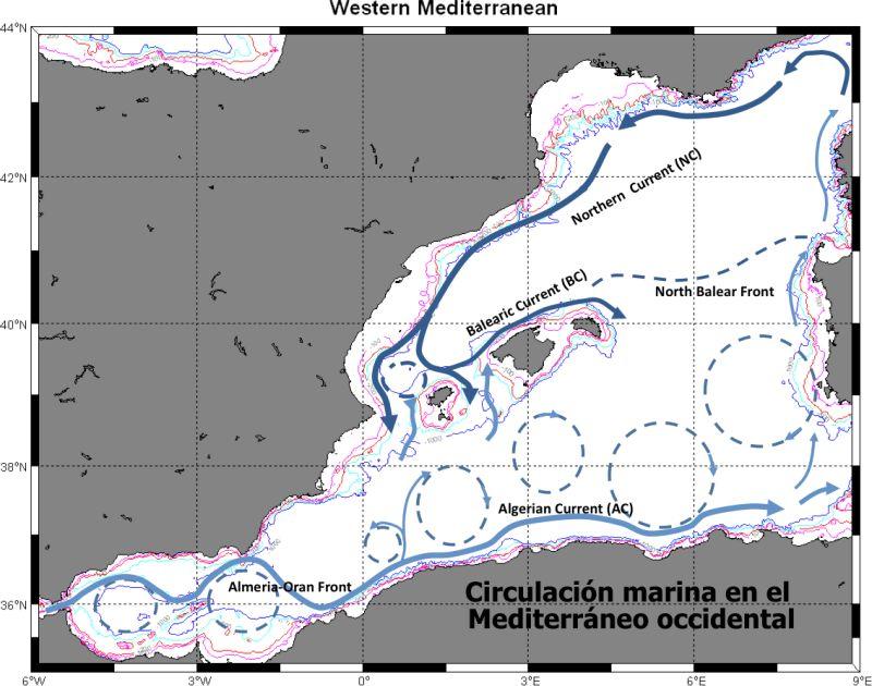 Circulacion mediterraneo_p