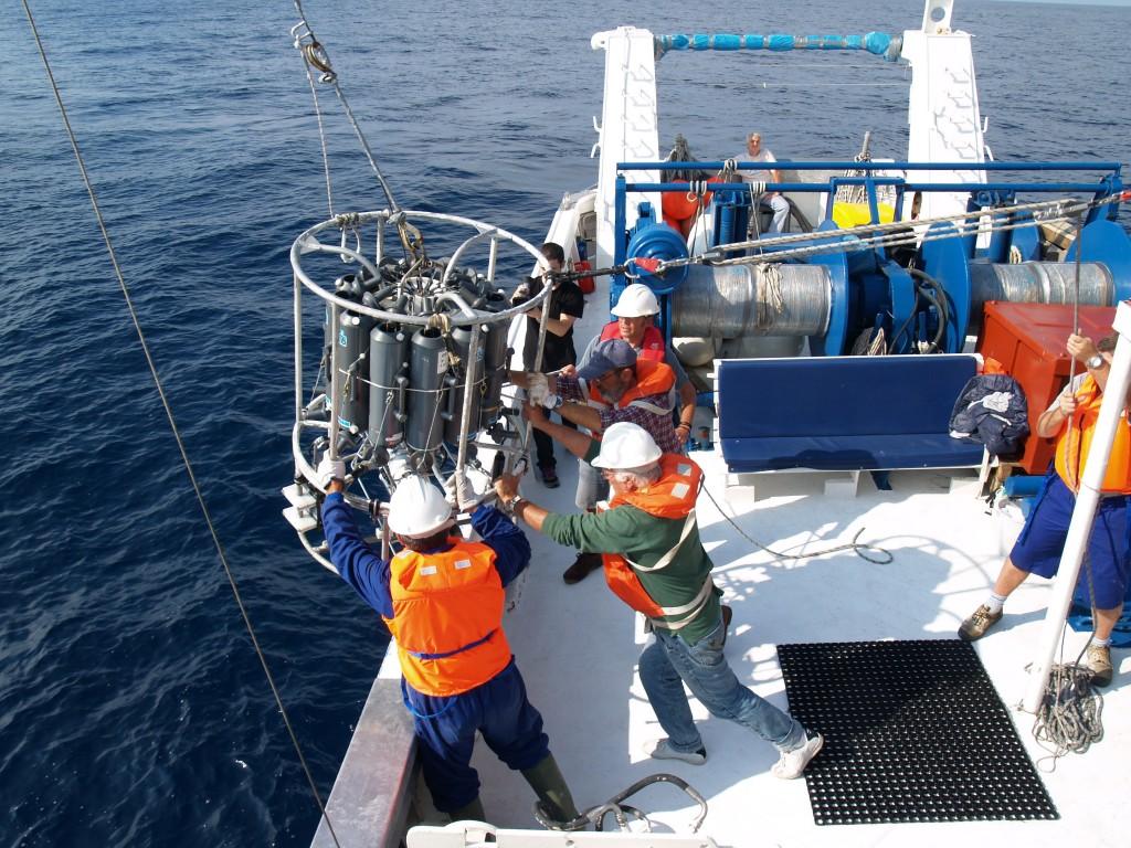 #16. ¿Cómo impactó el frío invierno de 2005 en el Mar Balear?