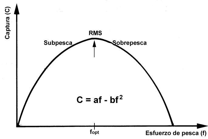 modelo produccion