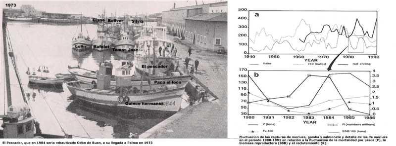 Pescador y fluctuacion de lluç jpg