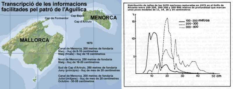 carta den Perico i Alacant jpg