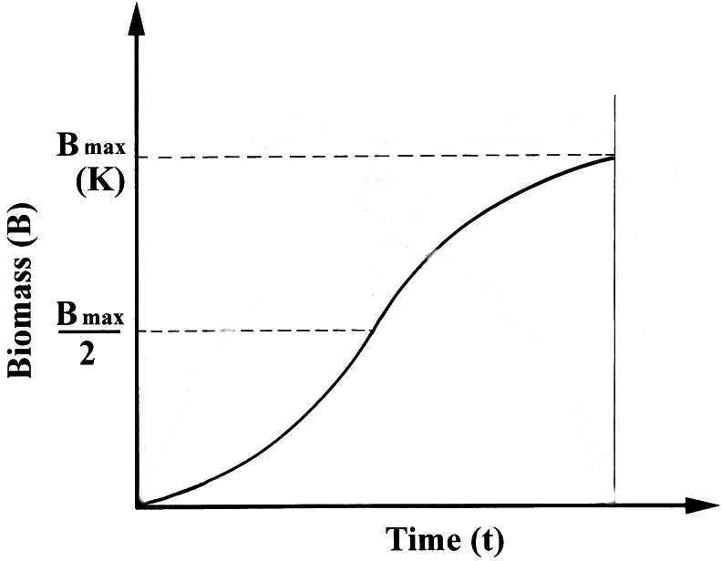 #34. Estrategias de vida: peces estrategas de la K y peces estrategas de la r