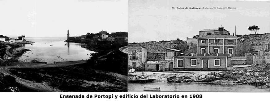 #39. El laboratorio Oceanográfico de Baleares en su primera época: El Laboratorio Biologicomaríno de Portopí (1906-1914)