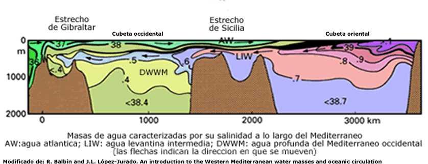 #43. La dinámica de masas de agua en el Mediterráneo occidental y en el Mar Balear