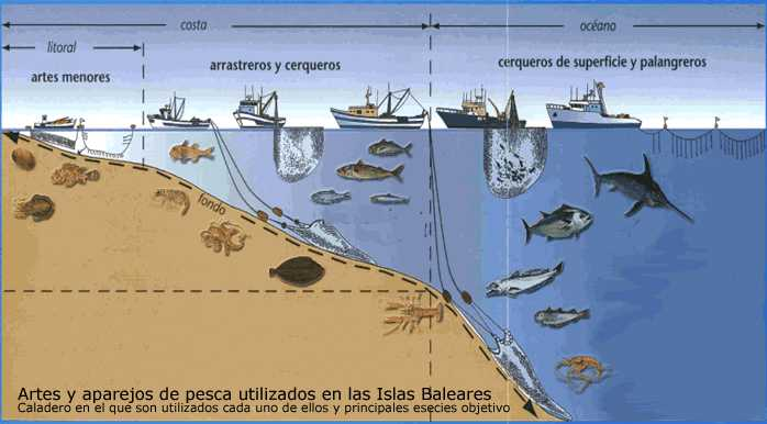 #48. Artes y aparejos de pesca utilizados en las Islas Baleares