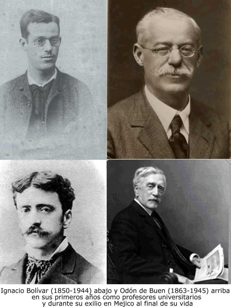 #56. El establecimiento de la oceanografía en España: Ignacio Bolívar y Odón de Buen